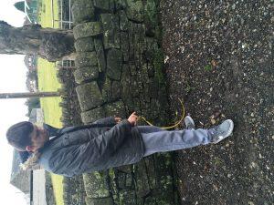 stones lh